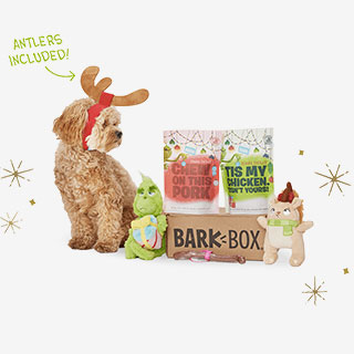 Barkbox Subscription Box - View the VIBE