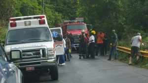 Sixteen cruise ship passengers injured two dead in bus - Bus from port authority to jersey gardens ...