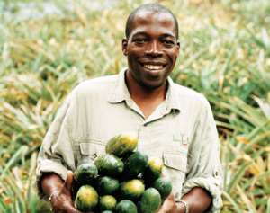 Rebel with a cause: Sam Raphael has given struggling Dominican farmers new jobs.