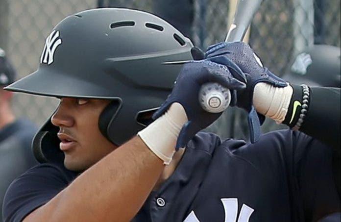 Novato RD es atracción de MLB aún sin debutar