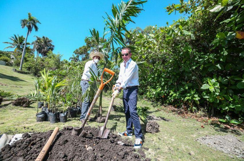 """Lifestyle Holidays realiza jornada de siembra de árboles para conmemorar """"El día de la Tierra""""."""