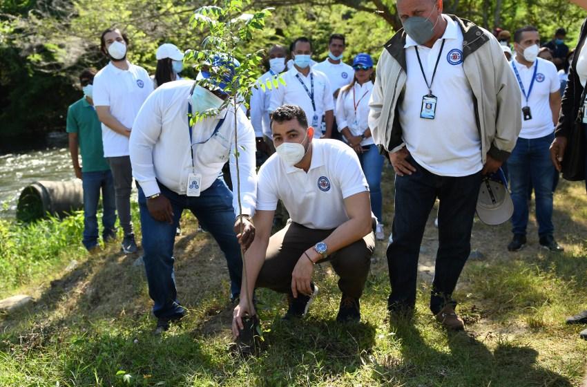 CORAASAN foresta por el Día Mundial del Árbol