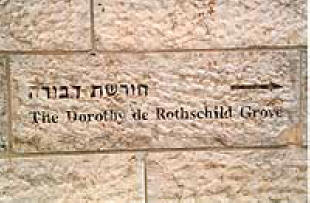 Sinister Sites - Israel Supreme Court