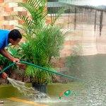 """Mientras las autoridades están a punto de declarar """"alerta roja"""" por la poca agua que acumulan las presas que alimentan el acueducto del Gran Santo Domingo, este joven desperdicia agua toda la tarde lavando una calzada. (Fotos: Genris García)"""