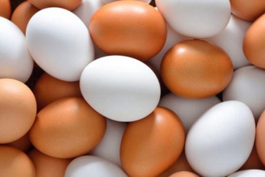En alerta roja mercado de huevos, leche y transporte de carga
