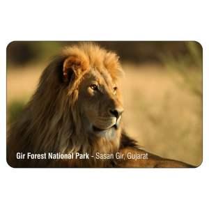 Gir National Park Fridge Magnet