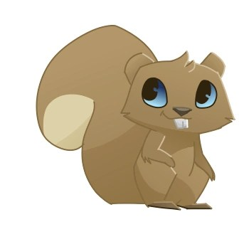 squirrel animal animal jam