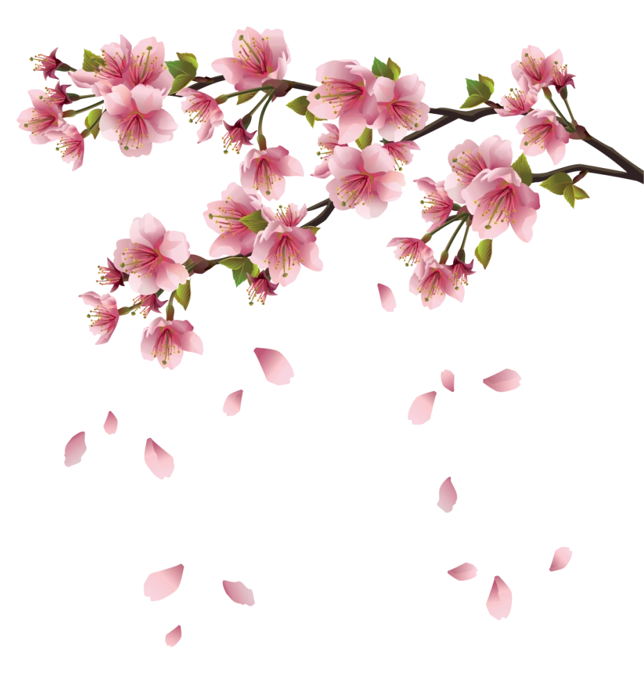 Sakura Falling Live Wallpaper Image Beautiful Pink Spring Branch With Falling Petals