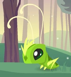 pet grasshopper animal jam