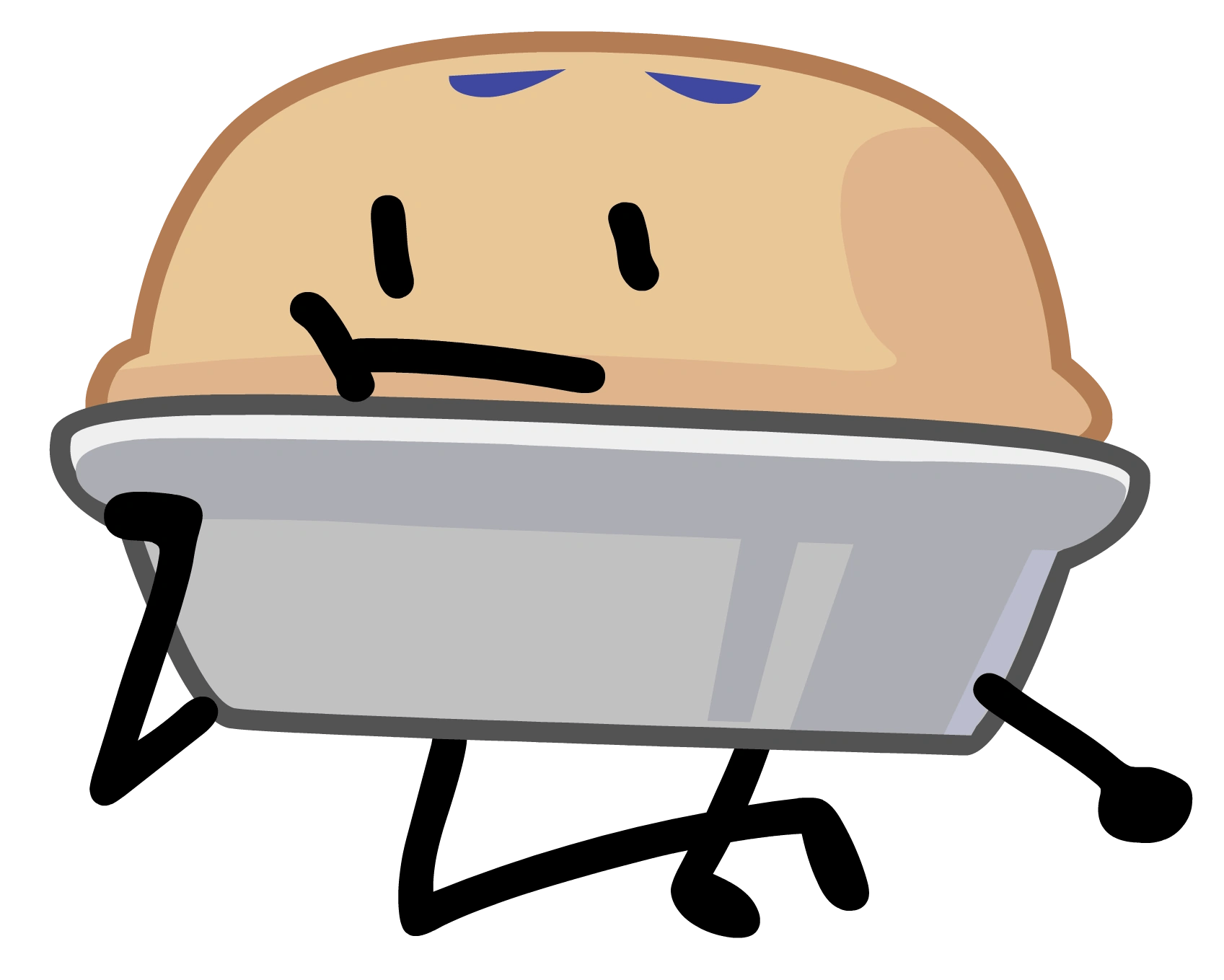 Bfdi Pie - Year of Clean Water