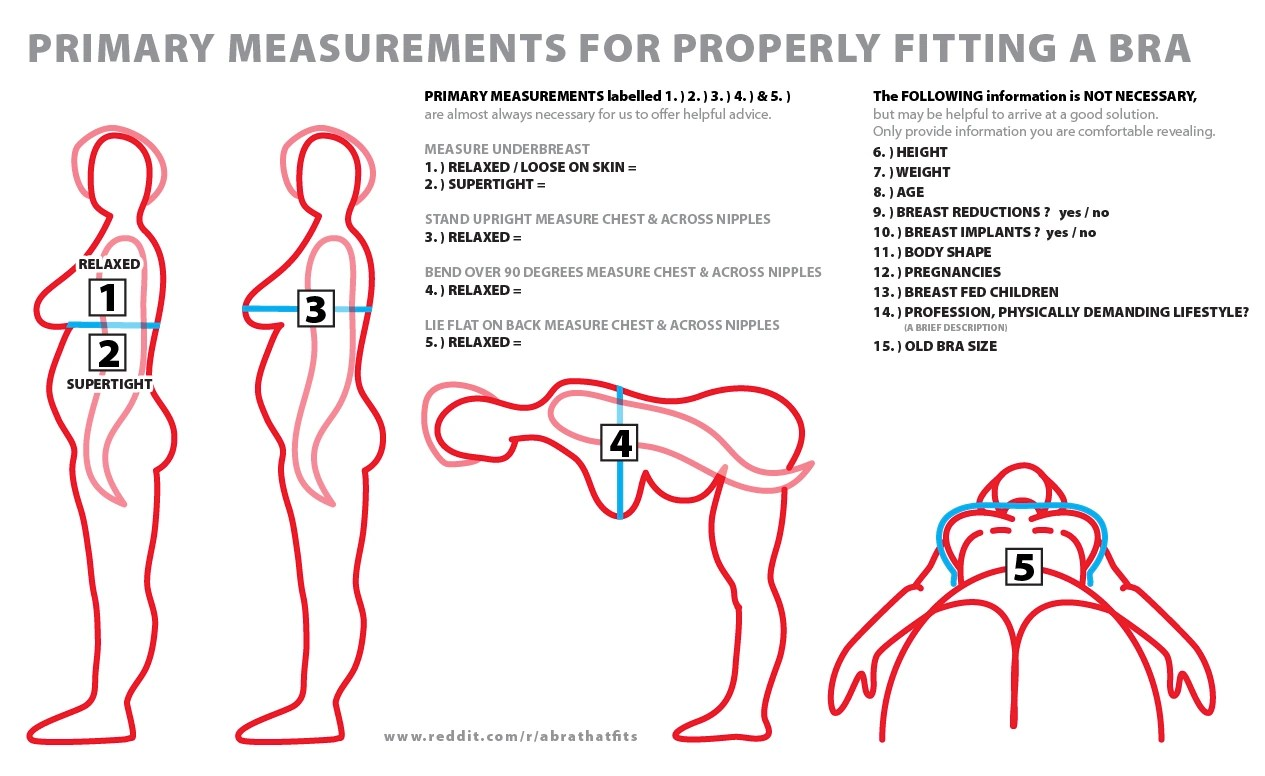 How to determine bra size for transgender women bustyresources wiki fandom powered by wikia also rh bustyresourcesa