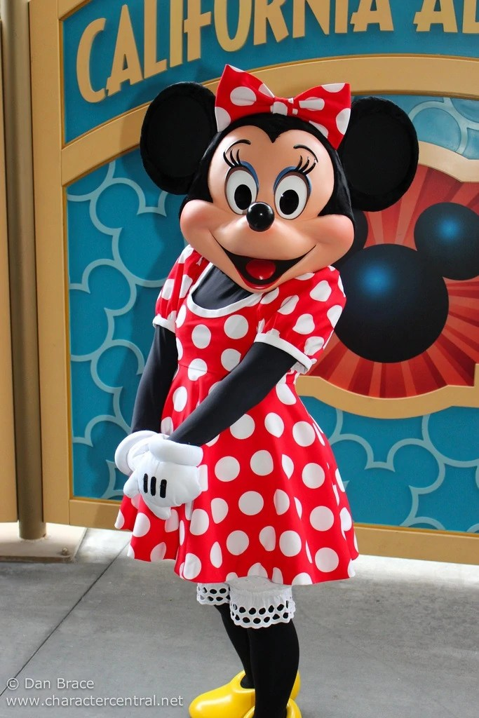 minnie mouse costume character