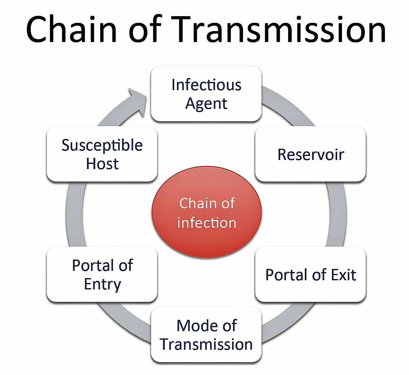 medium resolution of chain of transmission disease detectives wiki fandom powered by wikia
