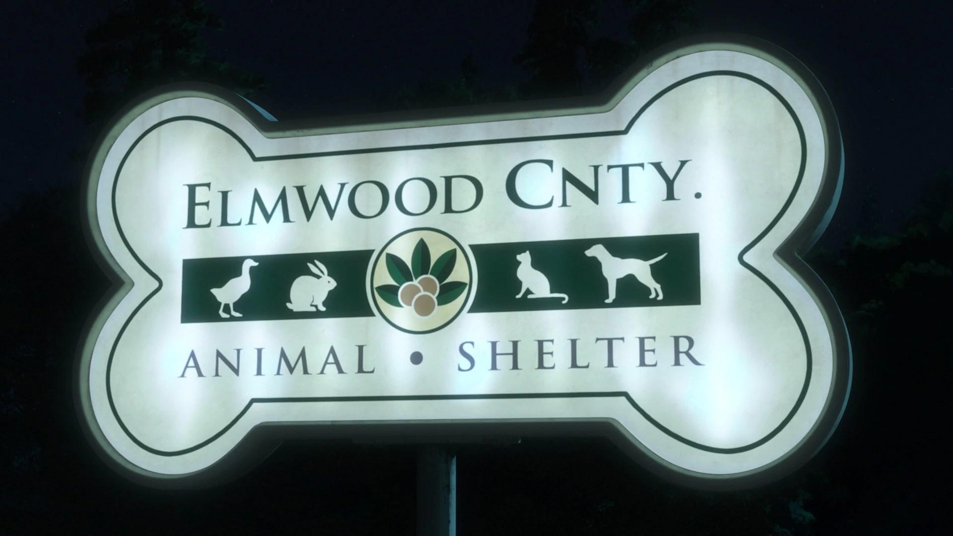 Elmwood County Animal Shelter Disney Wiki Fandom