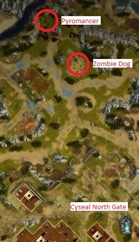 Gazelle Skin Map Locations : gazelle, locations, Divinity, Original, Cyseal, Maping, Resources