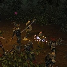 Dark Forest Dungeon Siege Wiki Fandom