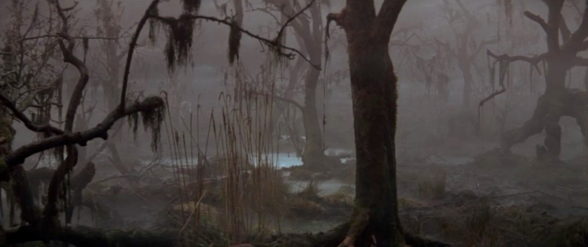 Swamp of Sadness  The Evil Wiki  FANDOM powered by Wikia