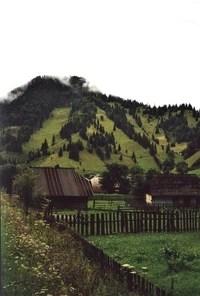 Suceava County Familypedia Fandom Powered By Wikia