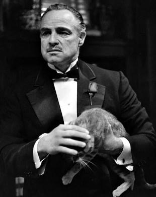 Vito Corleone | The Godfather Video Game Wiki | Fandom