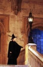 Sorting Ceremony Harry Potter Wiki Fandom Powered By Wikia
