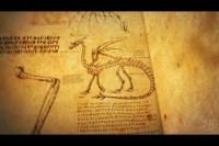 Dragon Anatomy | How to Train Your Dragon Wiki | FANDOM ...