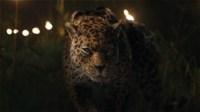 Jaguar | Jumanji Wiki | FANDOM powered by Wikia