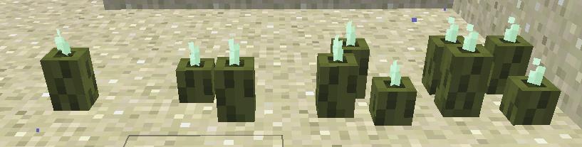 Sea Pickle  Minecraft Wiki  FANDOM powered by Wikia
