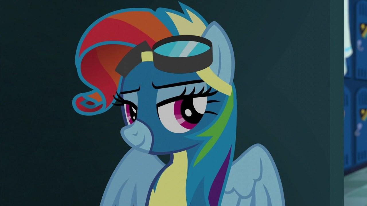 rainbow dash with rarity's