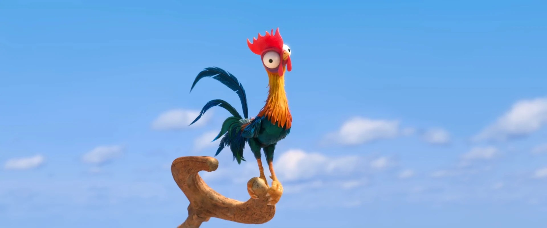 Chicken Quote Hd Wallpaper Heihei Moana Wikia Fandom Powered By Wikia