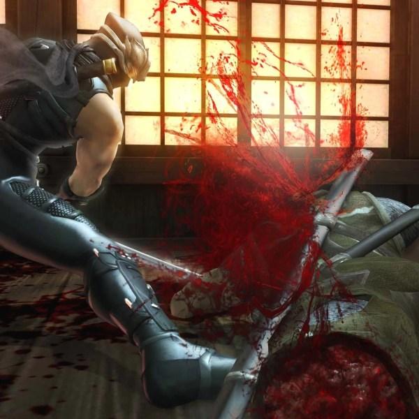 new ninja gaiden # 15