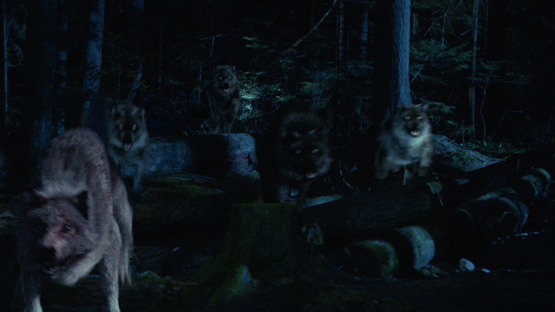 Werewolves  Once Upon a Time Wiki  FANDOM powered by Wikia