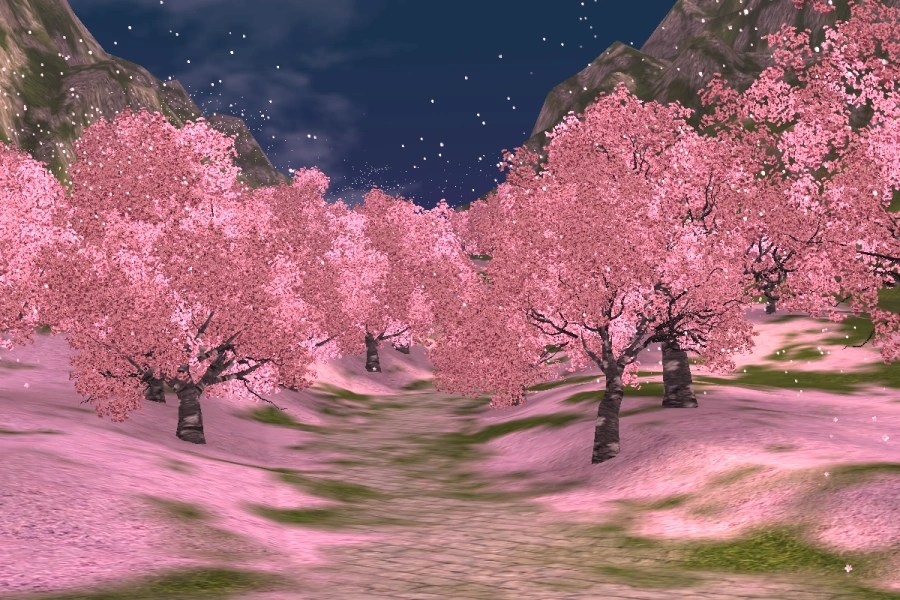 Anime Dark Angel Wallpaper Cherry Blossom Road Rappelz Wiki Fandom