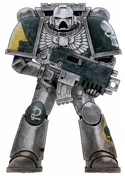 Silver Skulls  Warhammer 40k  FANDOM powered by Wikia