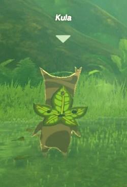 Kula  Zeldapedia  FANDOM powered by Wikia