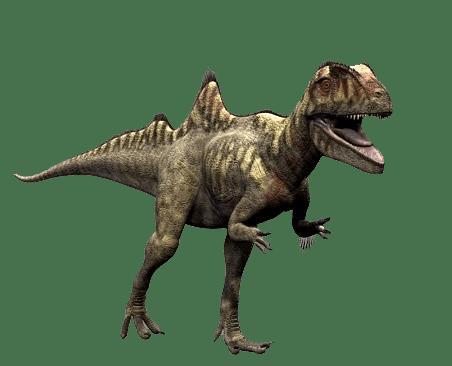 Concavenator Dinosaur Wiki Fandom Powered By Wikia