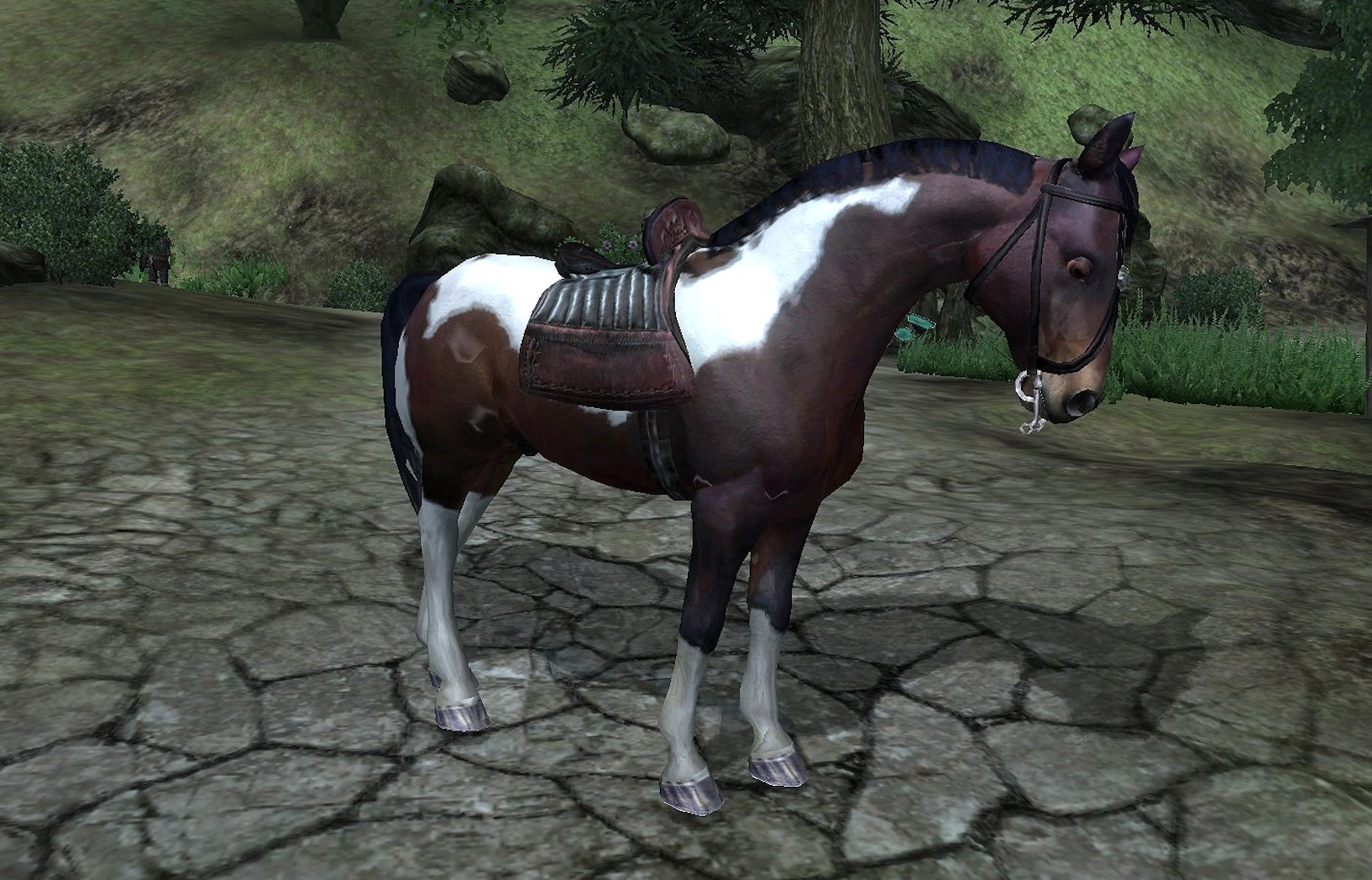 Paint Horse Elder Scrolls Fandom Powered Wikia