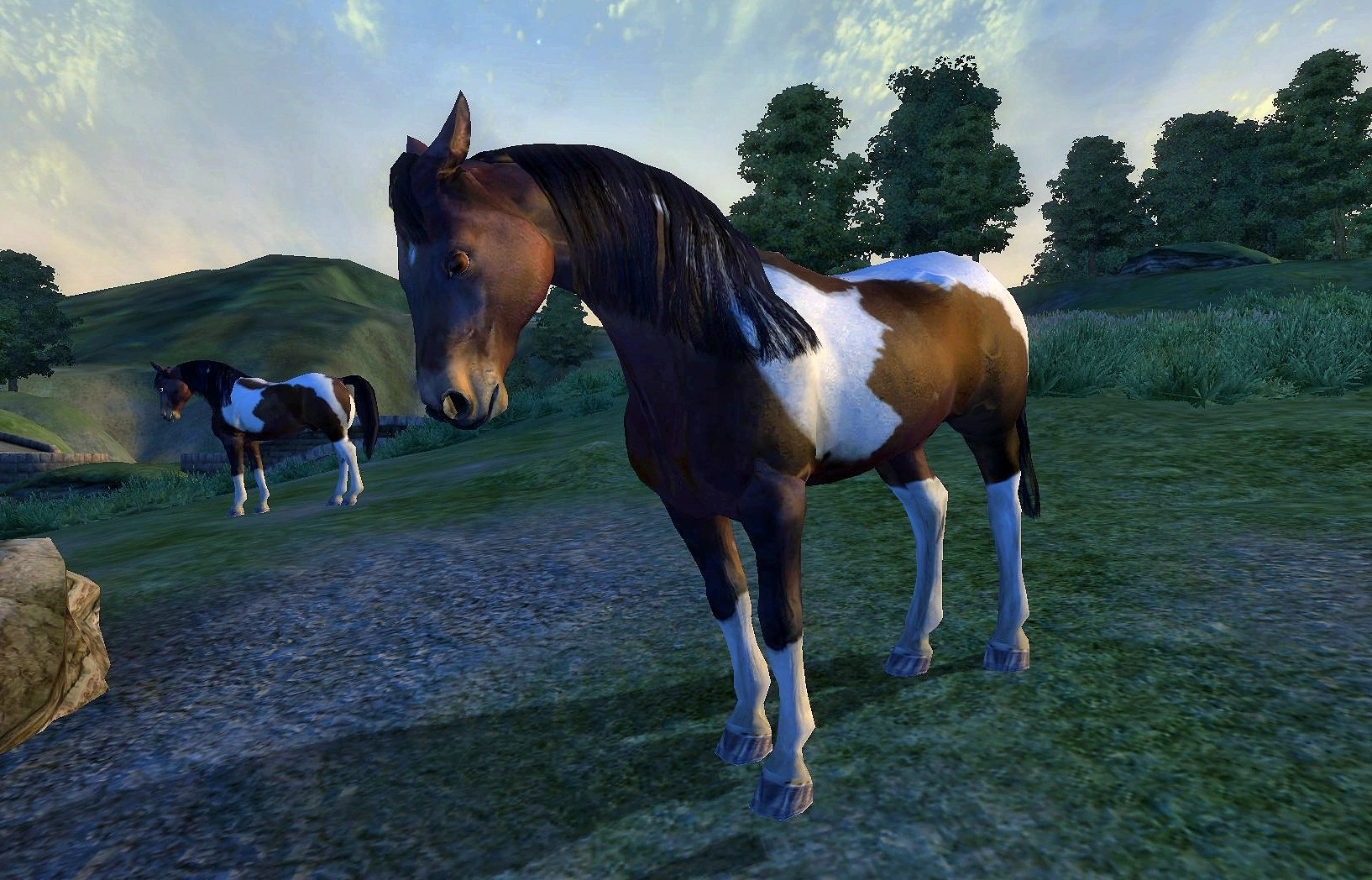 Wild Paint Horse Elder Scrolls Fandom Powered Wikia
