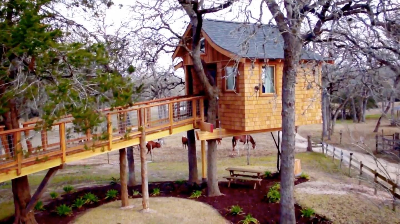Sky High Spa  Treehouse Masters Wiki  FANDOM powered by