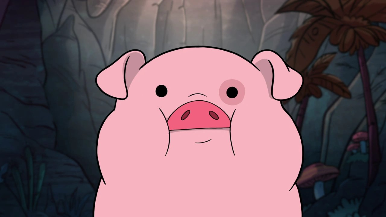 Gravity Falls Pig Wallpaper Waddles Gravity Falls Wiki Fandom Powered By Wikia