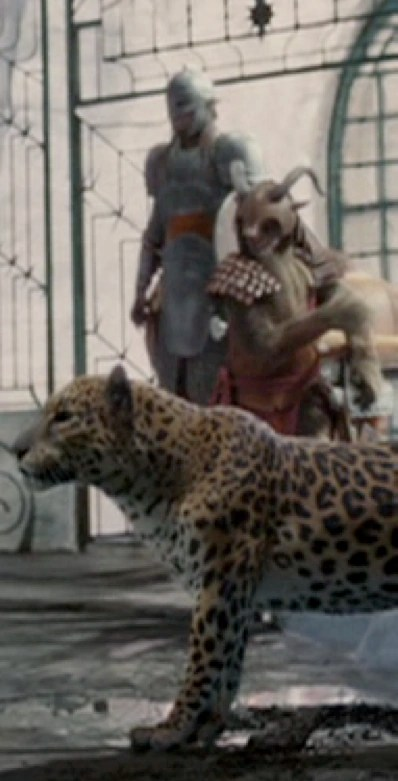 Leopard  The Chronicles of Narnia Wiki  Fandom powered