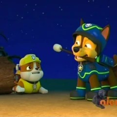 RubbleGalleryPups Save The Parrot PAW Patrol Wiki FANDOM Powered By Wikia