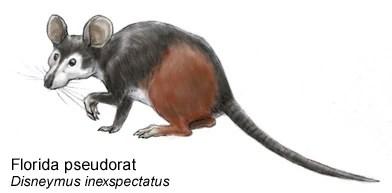 Spec Mammalia Xenotheridia Speculative Evolution Wiki