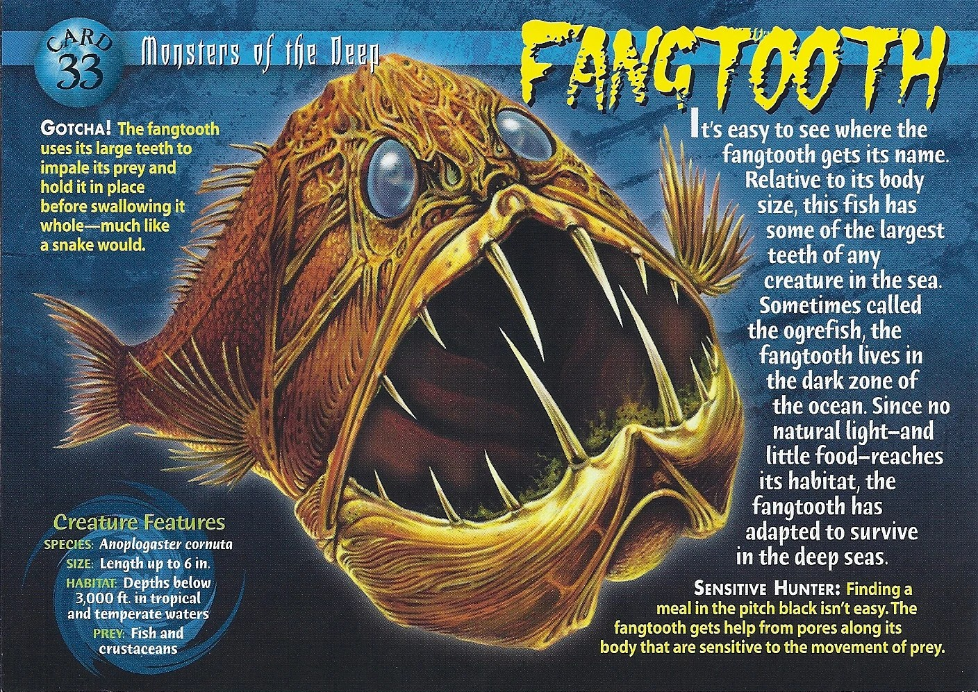 Fangtooth Wierd Nwild Creatures Wiki FANDOM Powered