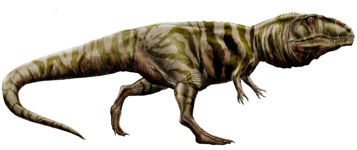About Dinosaurs Carnotaurus