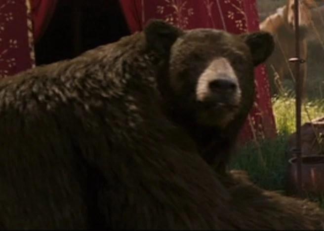 Bear  The Chronicles of Narnia Wiki  Fandom powered by Wikia