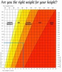 Body mass index | Psychology Wiki | FANDOM powered by Wikia