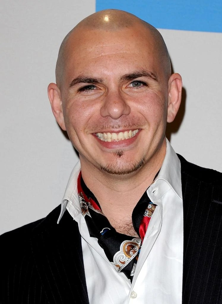 Pitbull Rapper Real Life Heroes And Good Guys Wiki