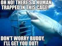 Image - Funny-animal-memes-006-001.jpg | Animal Jam Wiki ...