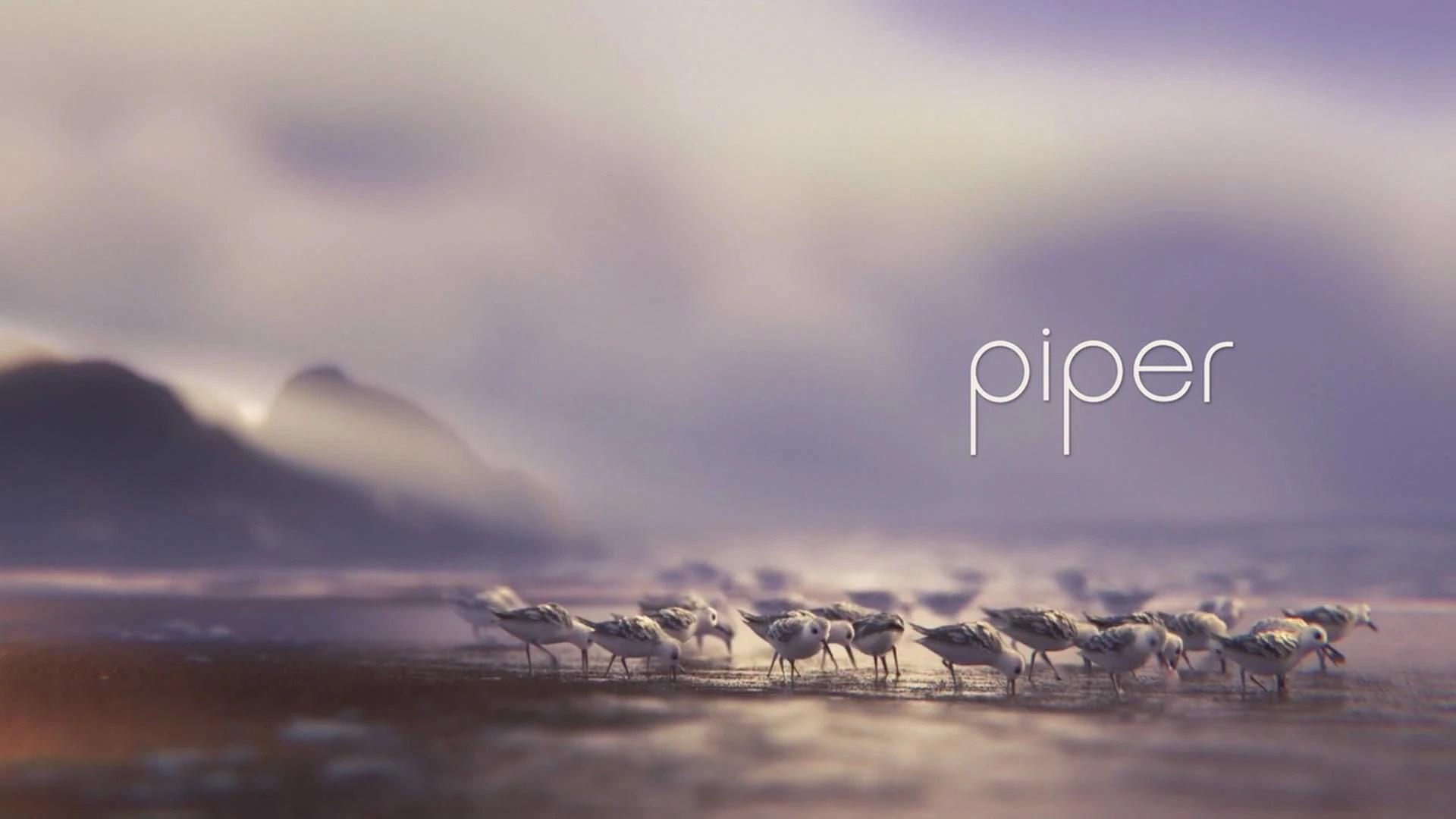 Frozen Animated Wallpaper Piper Disney Wiki Fandom Powered By Wikia