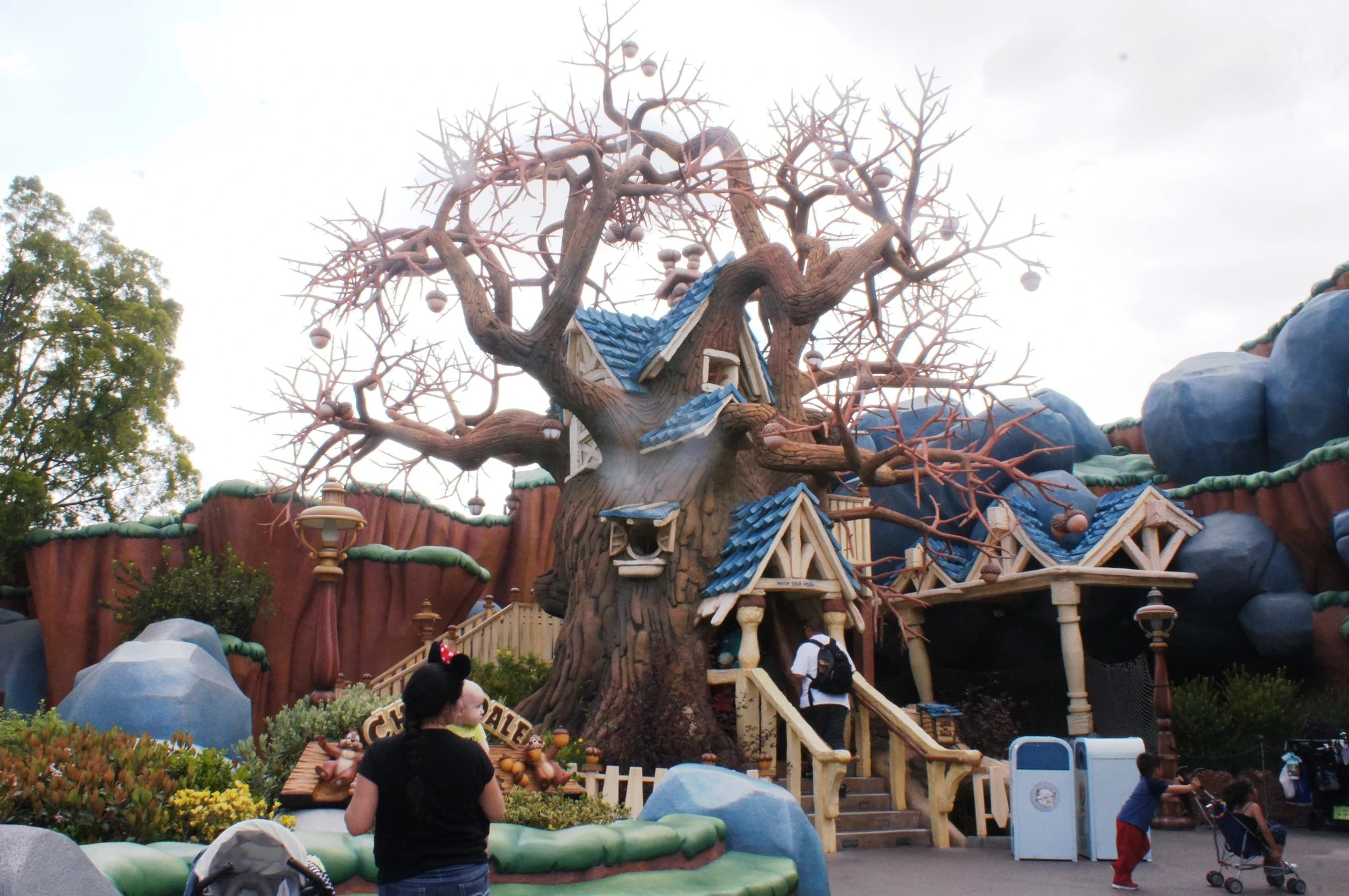 Chip And Dale' Treehouse Disney Wiki Fandom Powered